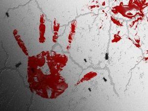 Journalistes assassinés en Centrafrique : RSF réclame une enquête «sérieuse et approfondie»