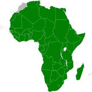 Elections à l'UA : l'Afrique du Sud soupçonnée de velléités hégémoniques (diplomate)