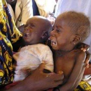 Les responsables des agences alimentaires de l'ONU se rendent au Niger afin de soutenir les efforts visant à lutter contre la faim au Sahel