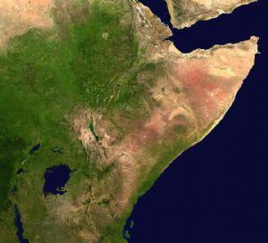 Ouverture à Djibouti d'un forum régional sur l'évolution probable du climat de la Corne de l'Afrique