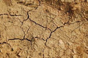 L'ONU met en garde contre une nouvelle sécheresse dans la Corne de l'Afrique