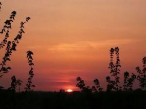 Bonsoir, Afrique du 25 septembre