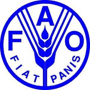 La FAO aidera le Mozambique à lutter contre les maladies de fruits