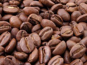 Le Burundi est embarqué dans un processus de «renforcement de la visibilité internationale» de son café