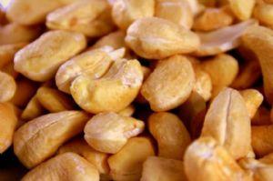 Guinée-Bissau : 12 milliards de FCFA pour la commercialisation de la noix de cajou