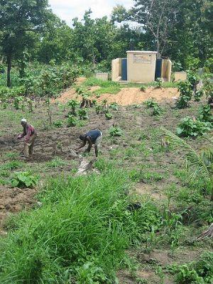 """L'Afrique invitée à améliorer sa """"gouvernance des terres"""" pour réduire la pauvreté"""