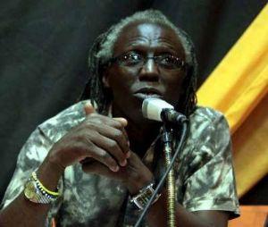 L'écrivain Apedo-Amah s'adresse à la conscience de l'intelligentsia africaine