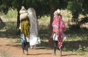 Les mutilations génitales féminines en baisse