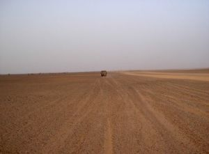 Sahara Occidental : L'accord de pêche UE-Maroc devrait être déclaré invalide