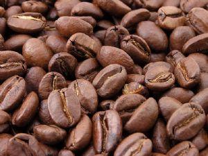 Café : Tombée de 25 à 12% de la production mondiale, l'Afrique se repositionne sur le marché de l'offre