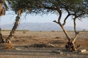 Erythrée : la dictature continue de faire fuir des footballeurs