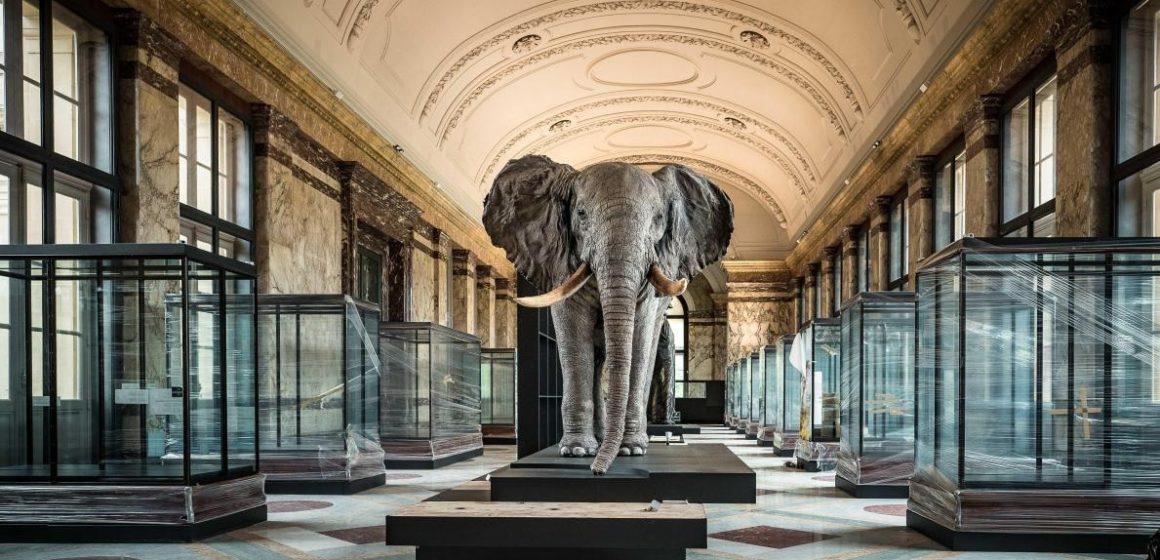Culture : après un lifting, le musée de l'Afrique de Tervuren a rouvert ses portes