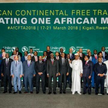 Les entreprises chinoises présentes en Afrique bénéficieraient de la mise en oeuvre de la ZLECA (expert économique)